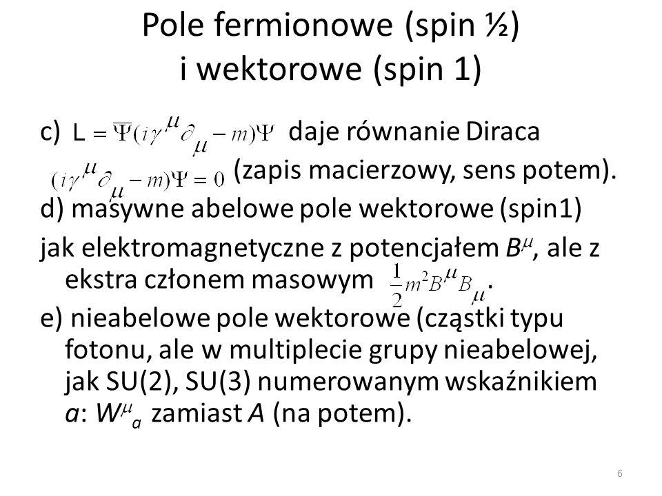 Pole fermionowe (spin ½) i wektorowe (spin 1)