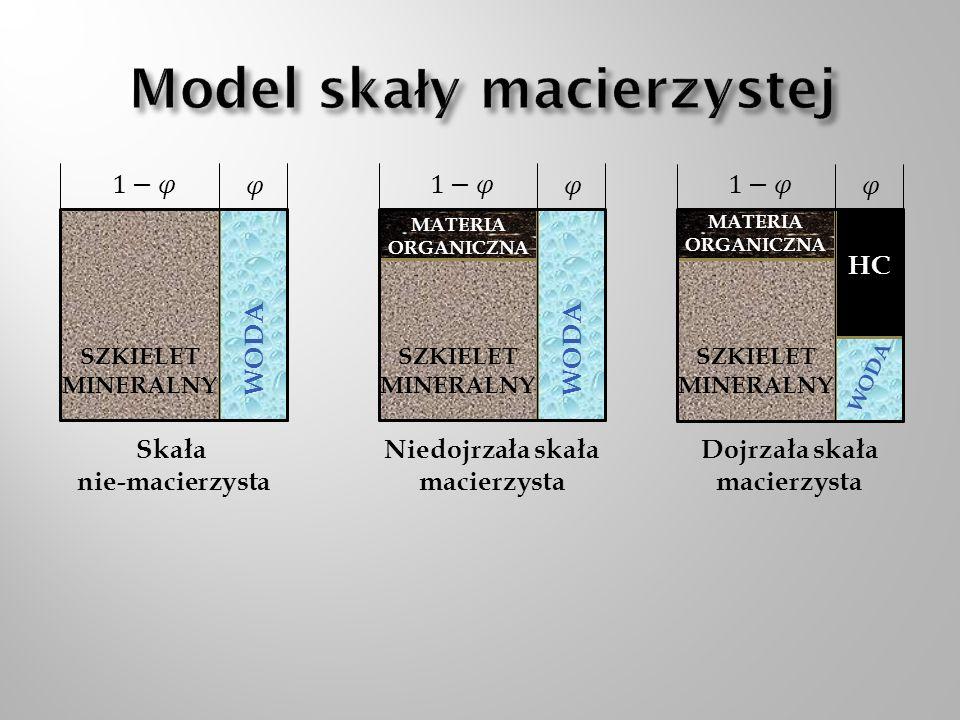 Model skały macierzystej