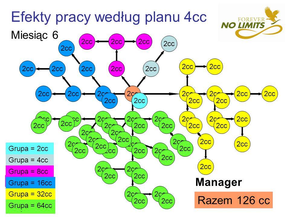 Efekty pracy według planu 4cc