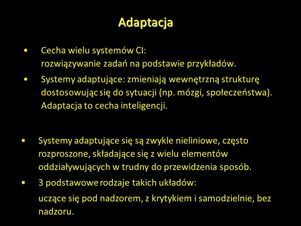 Adaptacja Cecha wielu systemów CI: rozwiązywanie zadań na podstawie przykładów.