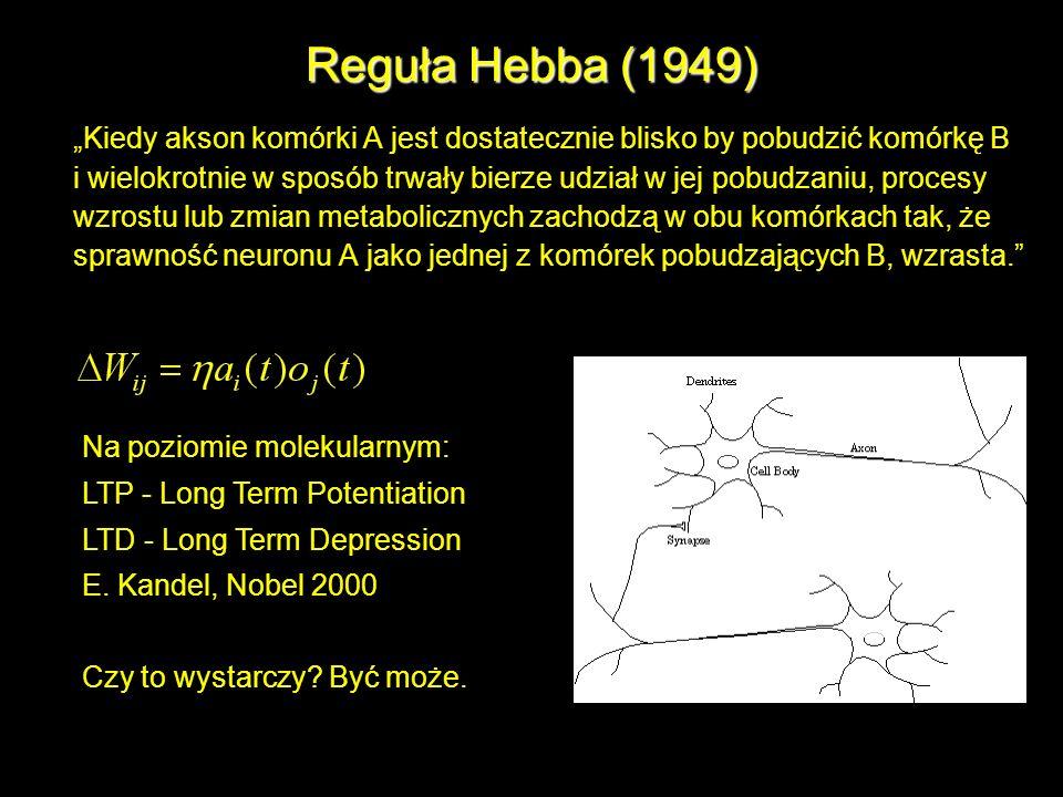 Reguła Hebba (1949)