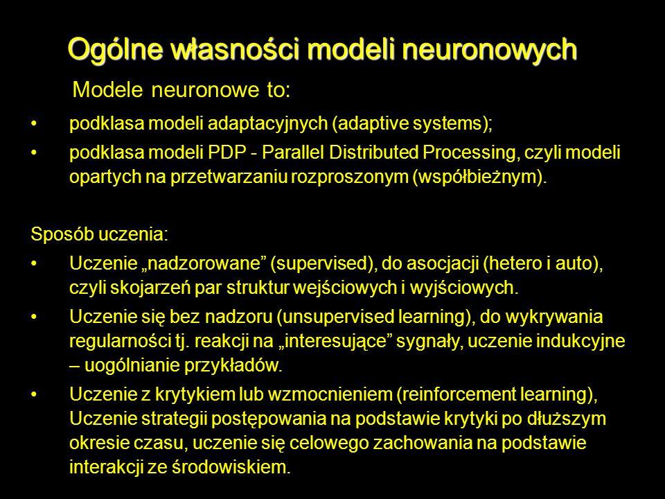 Ogólne własności modeli neuronowych