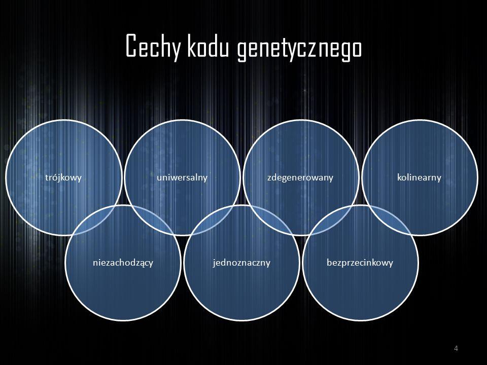 Cechy kodu genetycznego