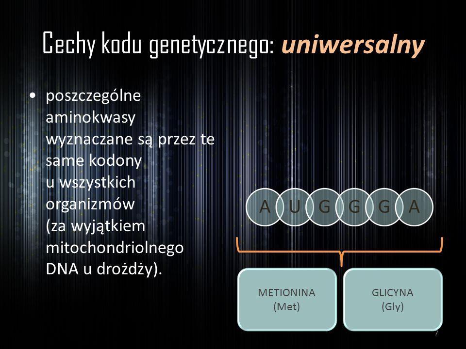 Cechy kodu genetycznego: uniwersalny
