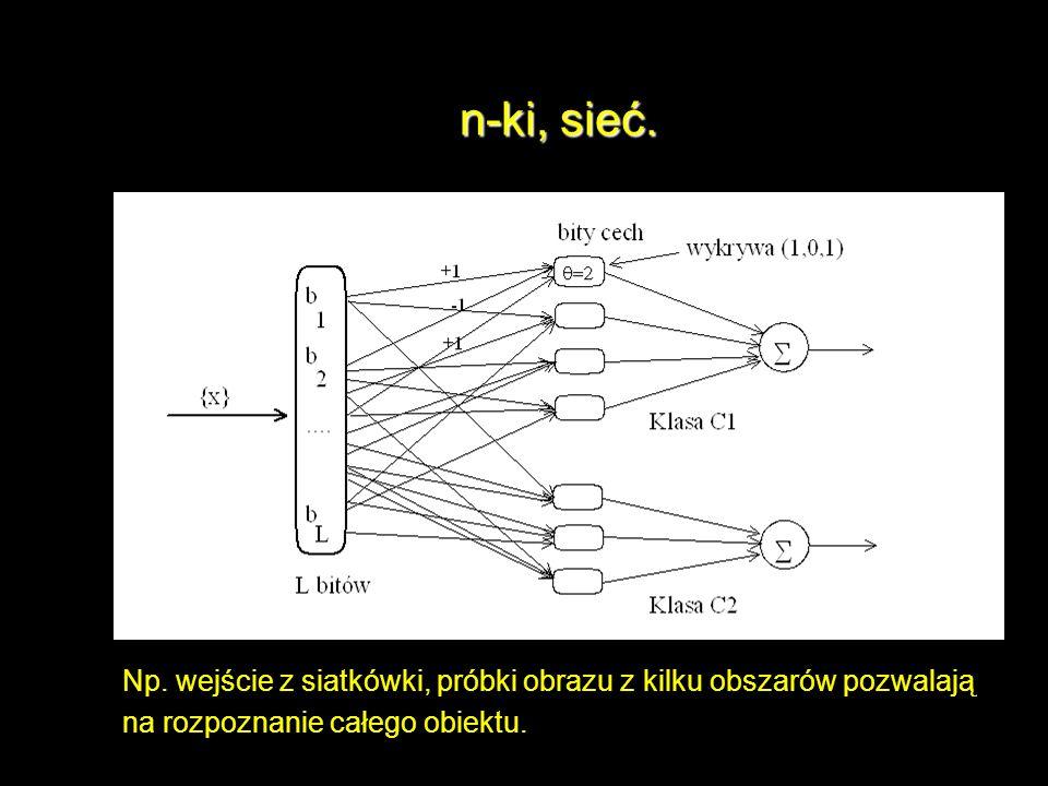 n-ki, sieć. Np. wejście z siatkówki, próbki obrazu z kilku obszarów pozwalają. na rozpoznanie całego obiektu.