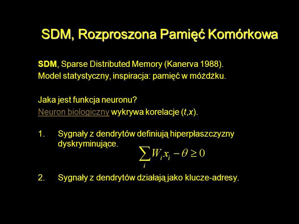 SDM, Rozproszona Pamięć Komórkowa