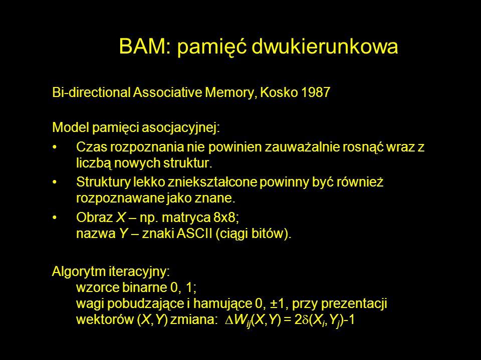 BAM: pamięć dwukierunkowa