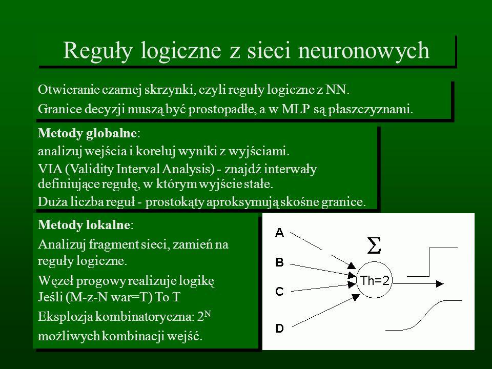 Reguły logiczne z sieci neuronowych