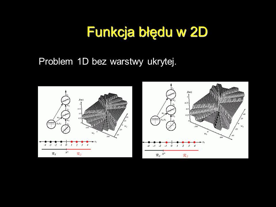 Funkcja błędu w 2D Problem 1D bez warstwy ukrytej.