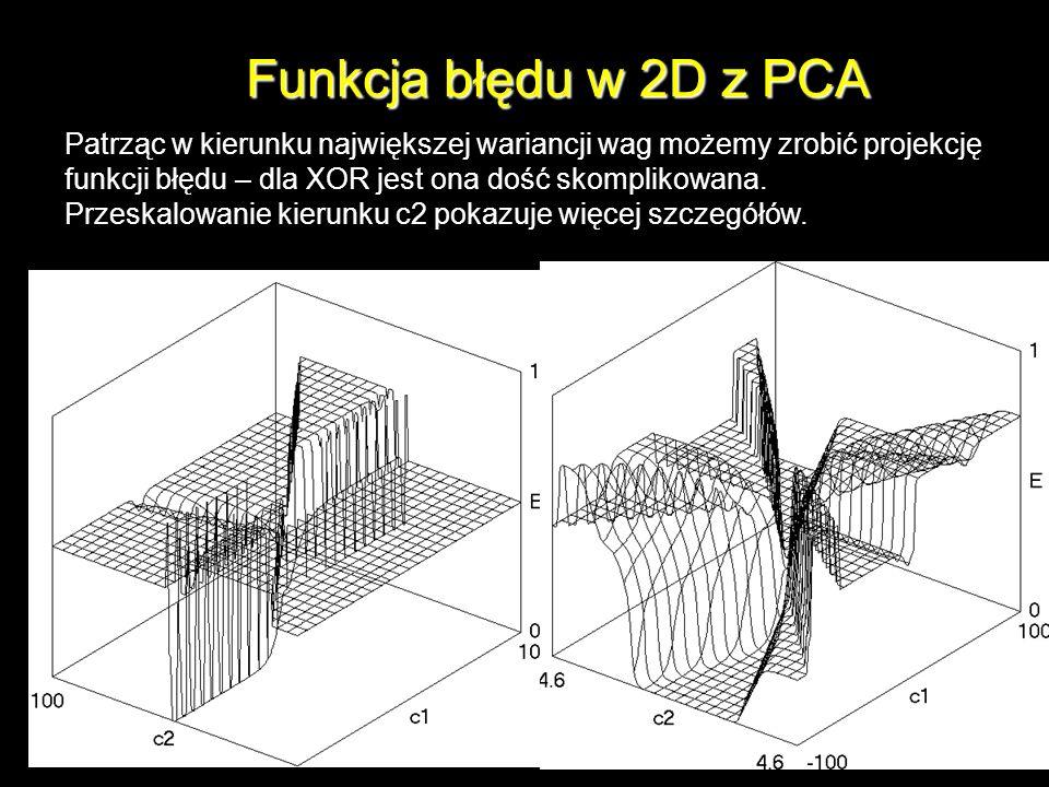Funkcja błędu w 2D z PCA