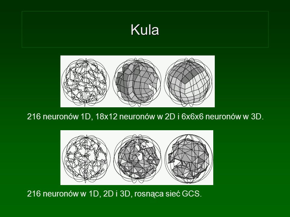 Kula 216 neuronów 1D, 18x12 neuronów w 2D i 6x6x6 neuronów w 3D.