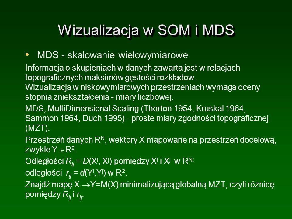Wizualizacja w SOM i MDS