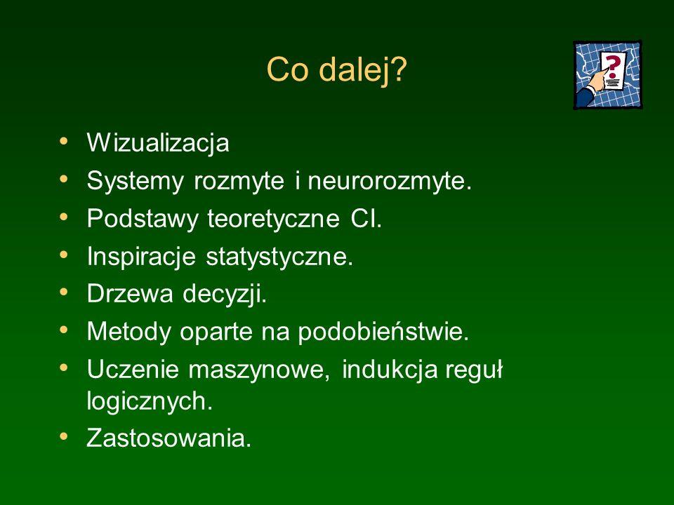 Co dalej Wizualizacja Systemy rozmyte i neurorozmyte.