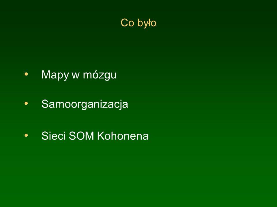 Mapy w mózgu Samoorganizacja Sieci SOM Kohonena Co było