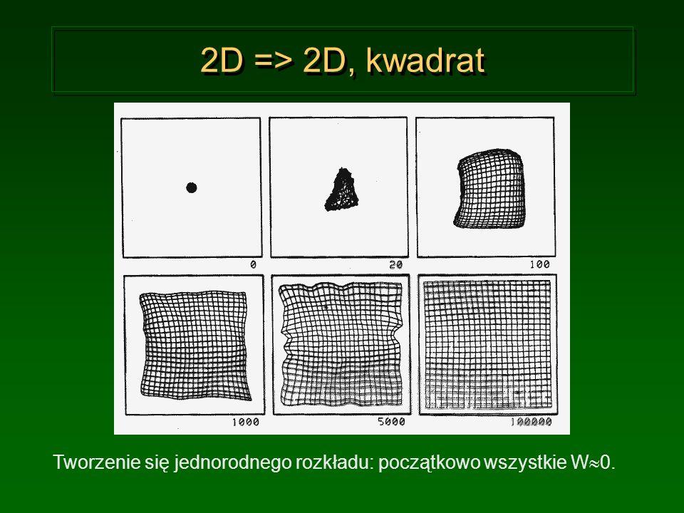 2D => 2D, kwadrat Tworzenie się jednorodnego rozkładu: początkowo wszystkie W0.