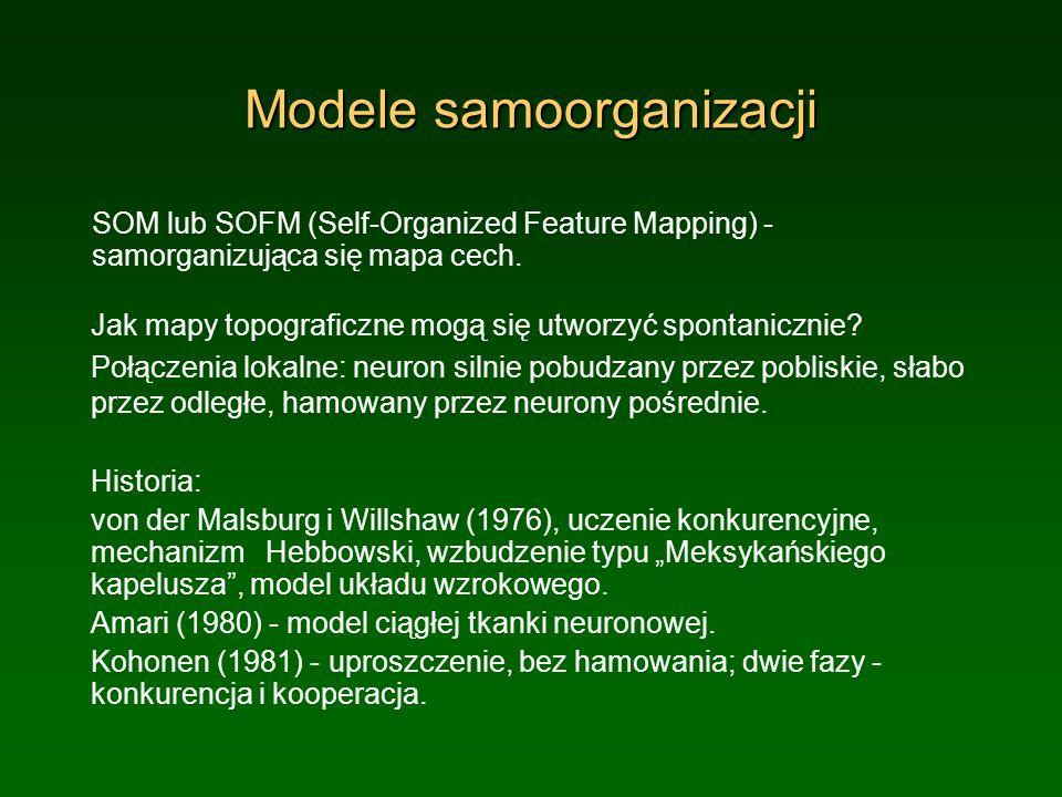 Modele samoorganizacji