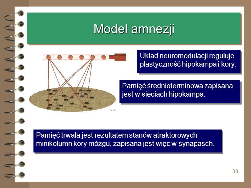 Model amnezji Układ neuromodulacji reguluje plastyczność hipokampa i kory. Pamięć średnioterminowa zapisana jest w sieciach hipokampa.