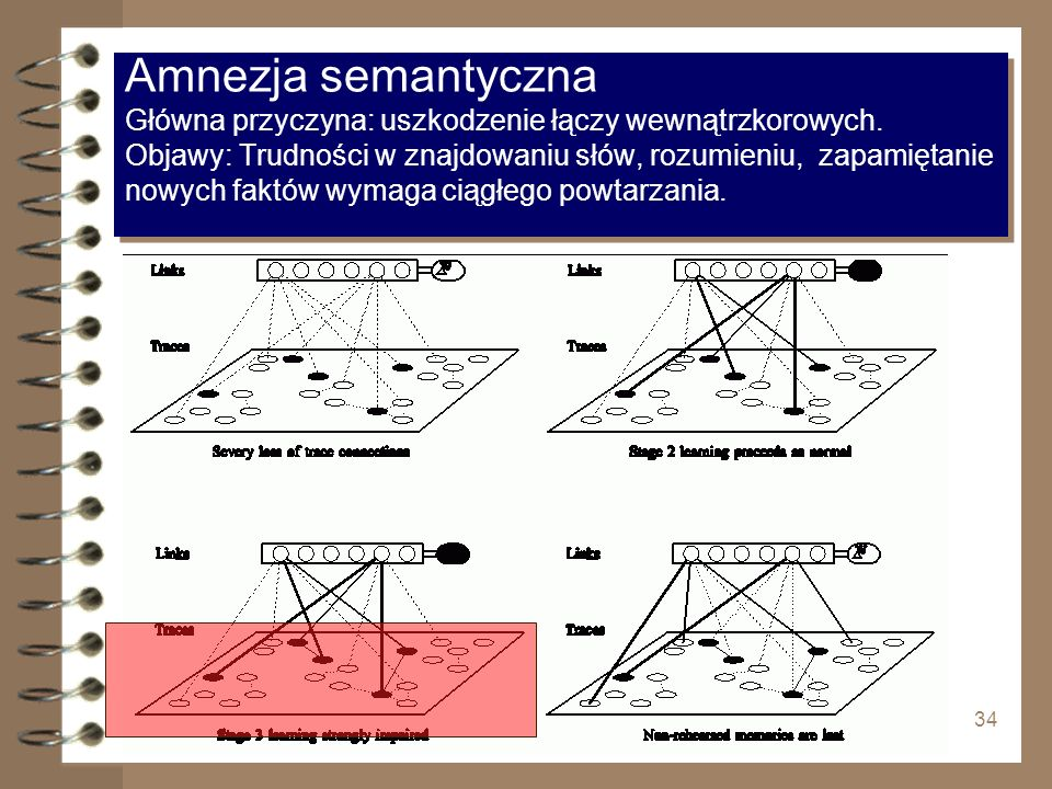Amnezja semantyczna Główna przyczyna: uszkodzenie łączy wewnątrzkorowych. Objawy: Trudności w znajdowaniu słów, rozumieniu, zapamiętanie nowych faktów wymaga ciągłego powtarzania.