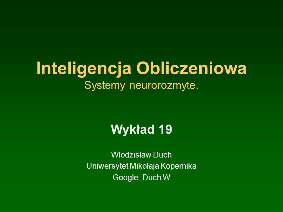 Inteligencja Obliczeniowa Systemy neurorozmyte.