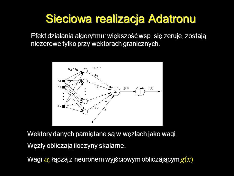 Sieciowa realizacja Adatronu