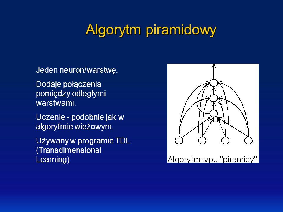 Algorytm piramidowy Jeden neuron/warstwę.