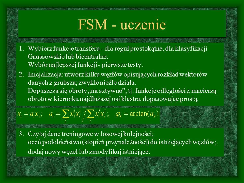 FSM - uczenie