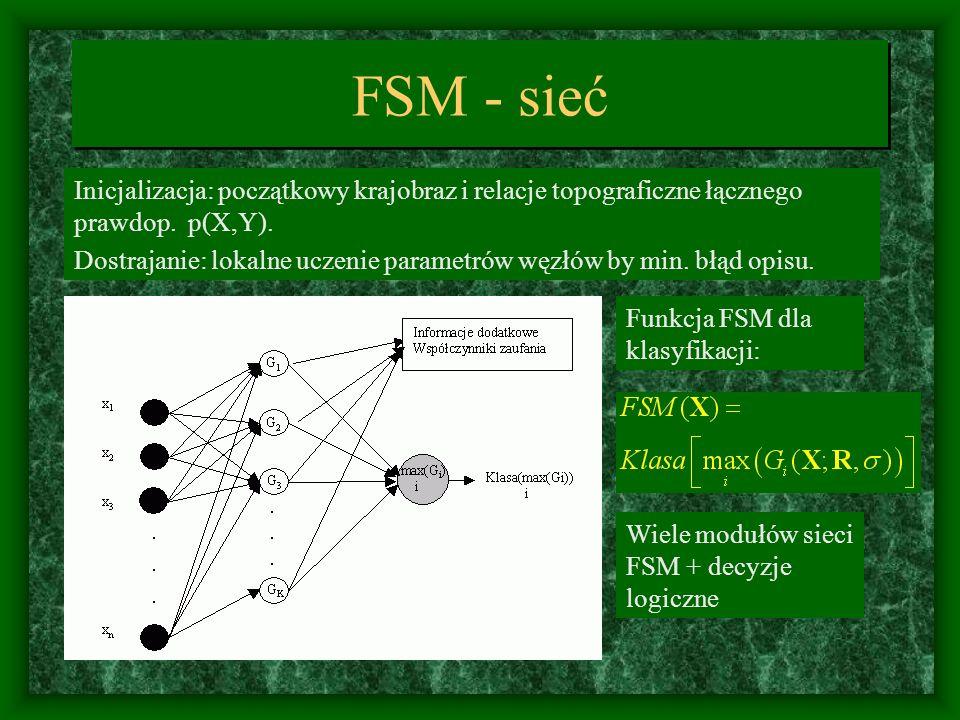 FSM - sieć Inicjalizacja: początkowy krajobraz i relacje topograficzne łącznego prawdop. p(X,Y).