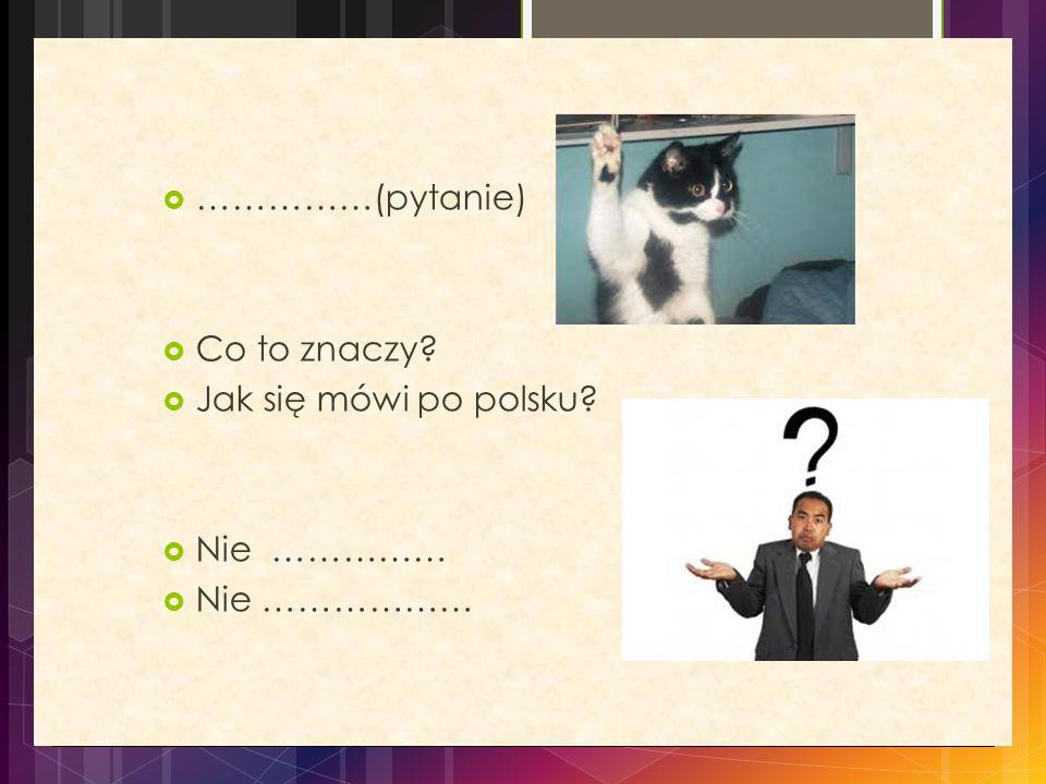 ……………(pytanie) Co to znaczy Jak się mówi po polsku Nie …………… Nie ………………