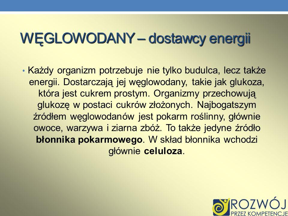 WĘGLOWODANY – dostawcy energii
