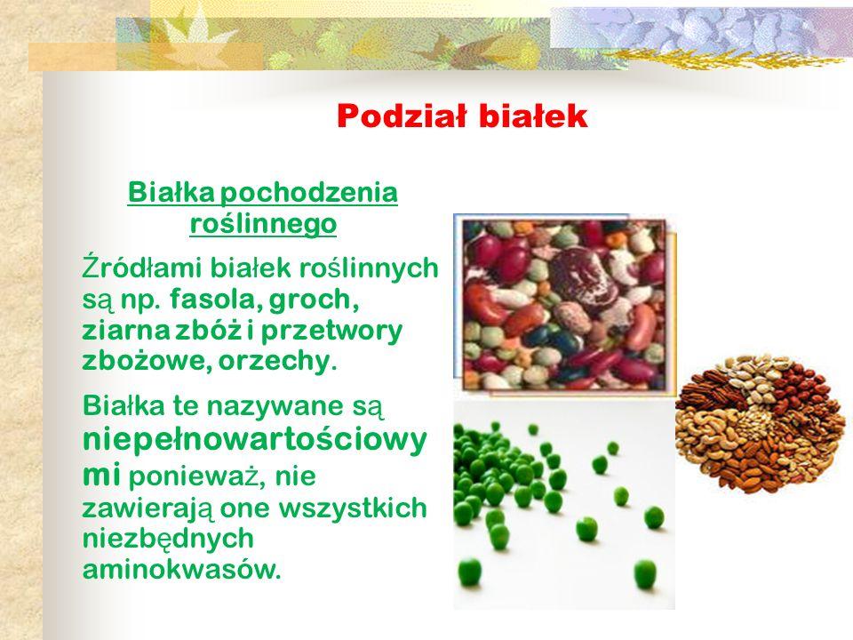 Białka pochodzenia roślinnego
