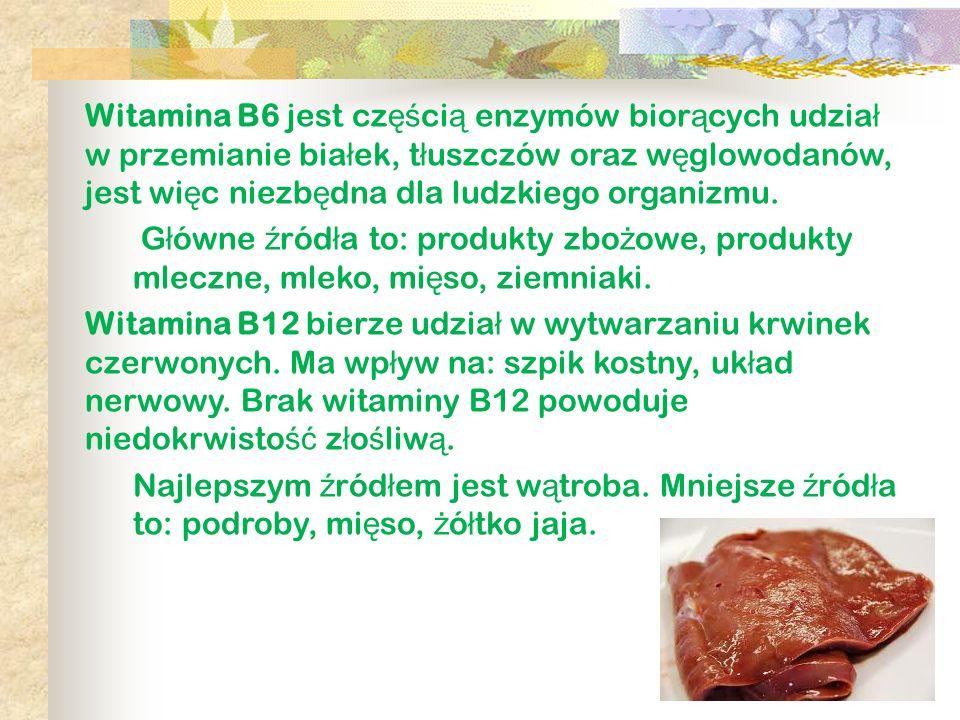 Witamina B6 jest częścią enzymów biorących udział w przemianie białek, tłuszczów oraz węglowodanów, jest więc niezbędna dla ludzkiego organizmu.