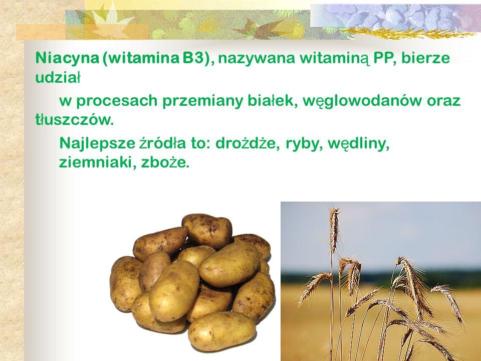 Niacyna (witamina B3), nazywana witaminą PP, bierze udział