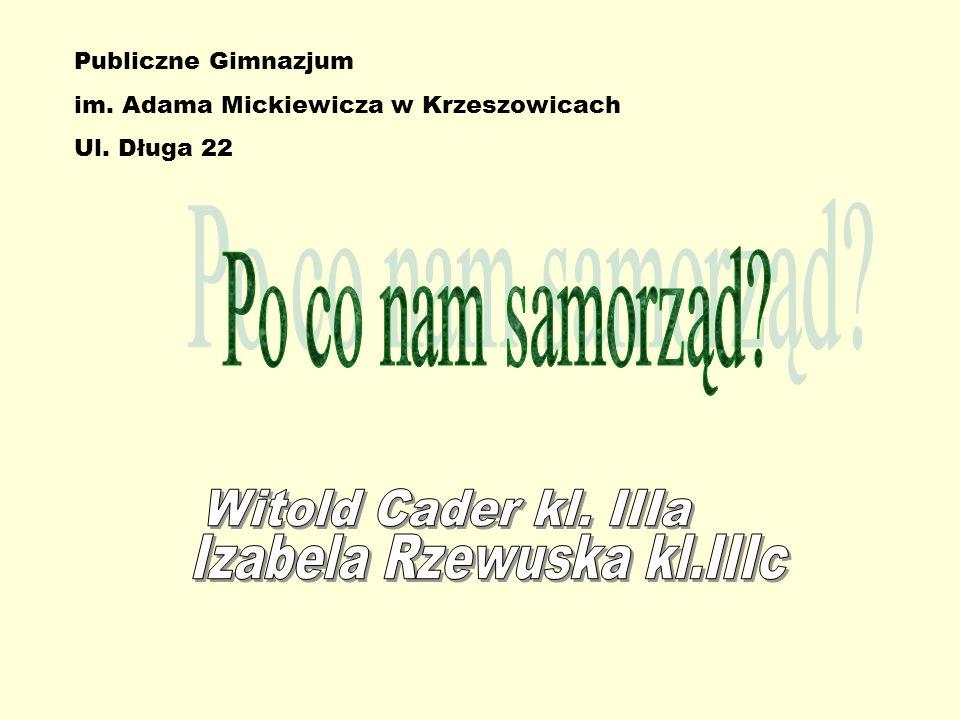 Izabela Rzewuska kl.IIIc