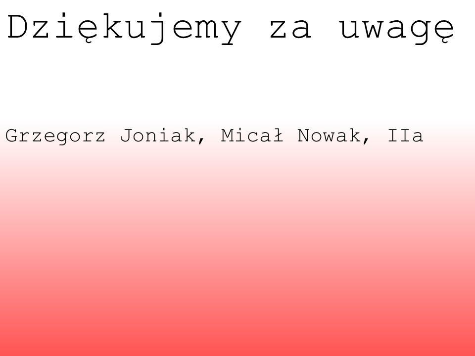 Dziękujemy za uwagę Grzegorz Joniak, Micał Nowak, IIa