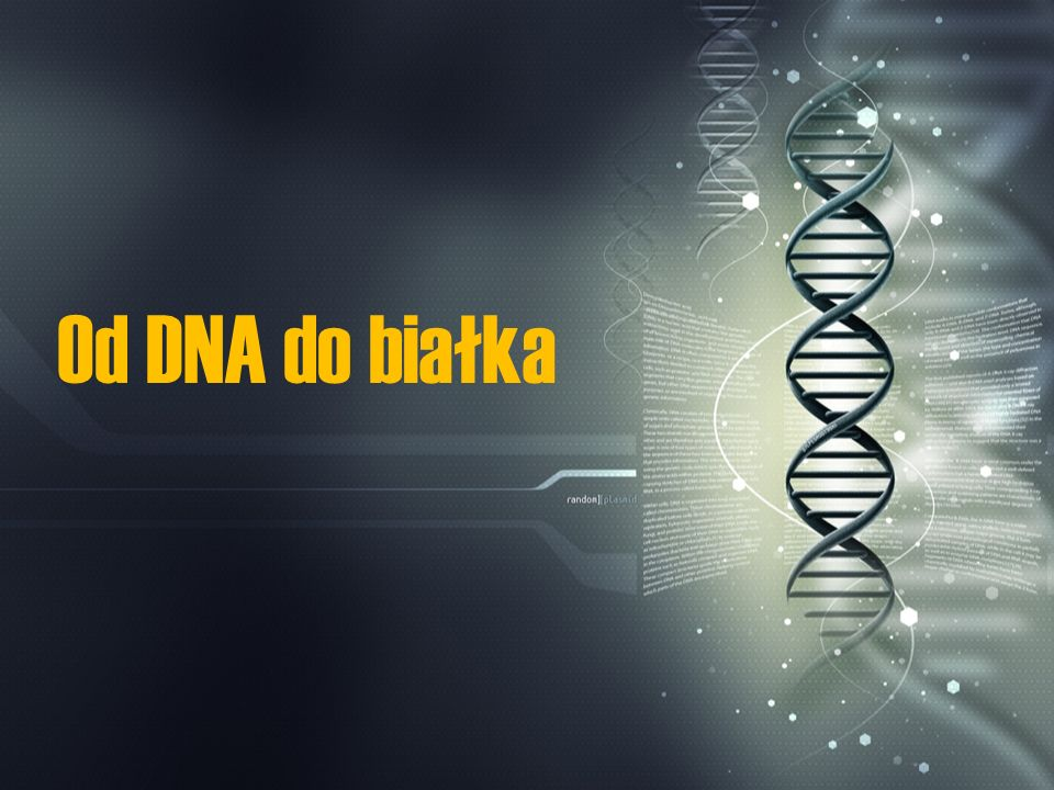 Od DNA do białka