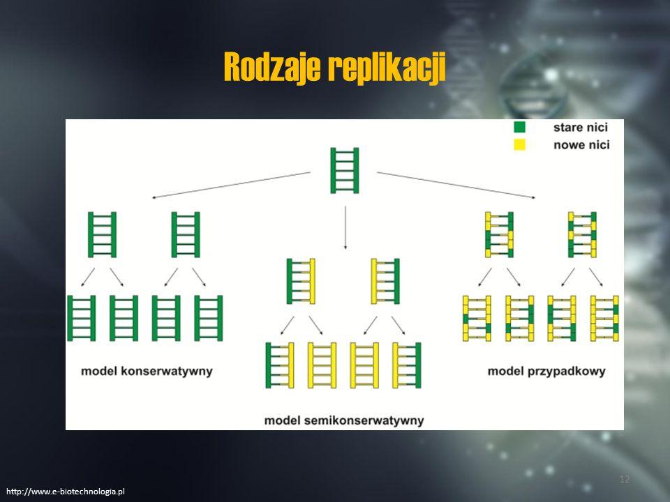 Rodzaje replikacji http://www.e-biotechnologia.pl