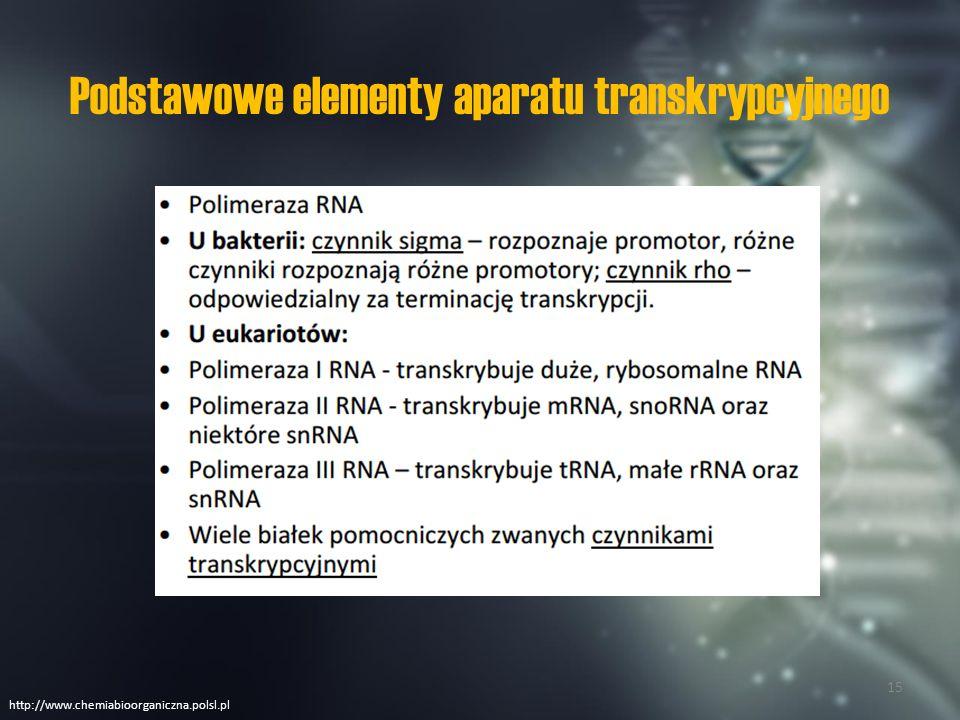 Podstawowe elementy aparatu transkrypcyjnego