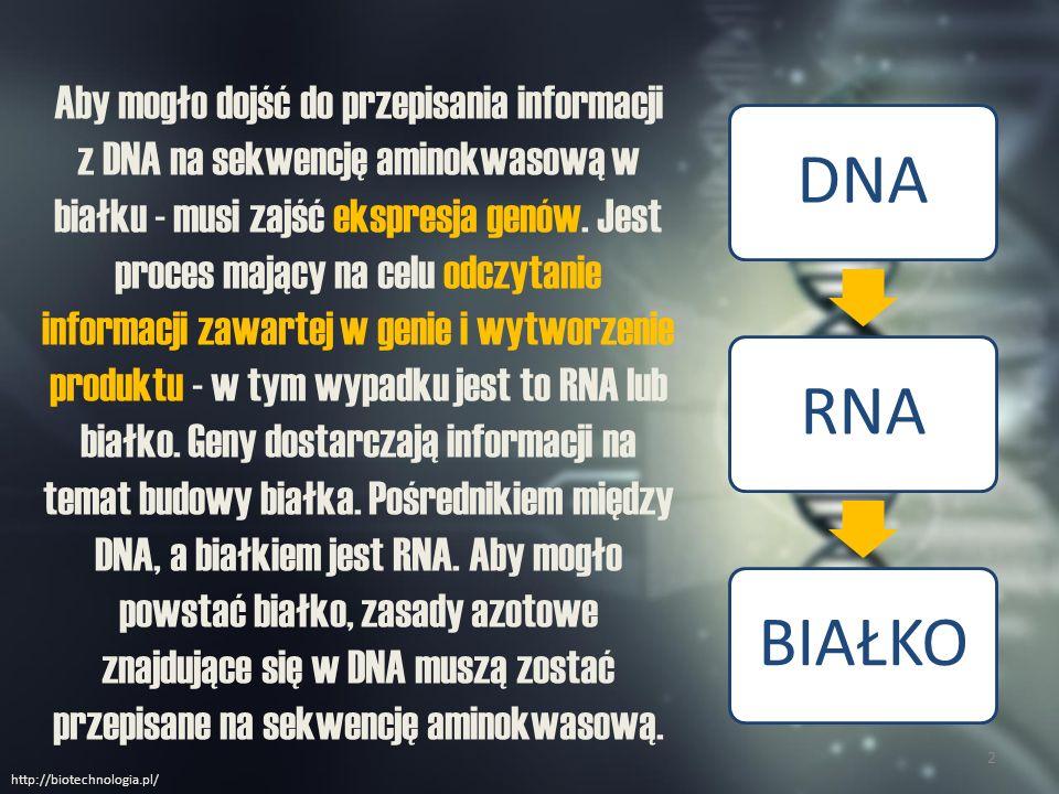 Aby mogło dojść do przepisania informacji z DNA na sekwencję aminokwasową w białku - musi zajść ekspresja genów. Jest proces mający na celu odczytanie informacji zawartej w genie i wytworzenie produktu - w tym wypadku jest to RNA lub białko. Geny dostarczają informacji na temat budowy białka. Pośrednikiem między DNA, a białkiem jest RNA. Aby mogło powstać białko, zasady azotowe znajdujące się w DNA muszą zostać przepisane na sekwencję aminokwasową.