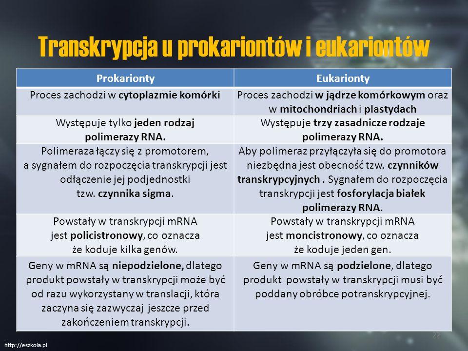 Transkrypcja u prokariontów i eukariontów