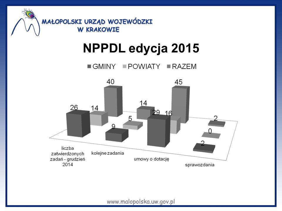 NPPDL edycja 2015