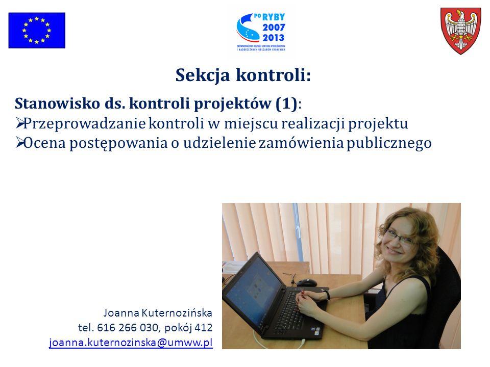 Sekcja kontroli: Stanowisko ds. kontroli projektów (1):