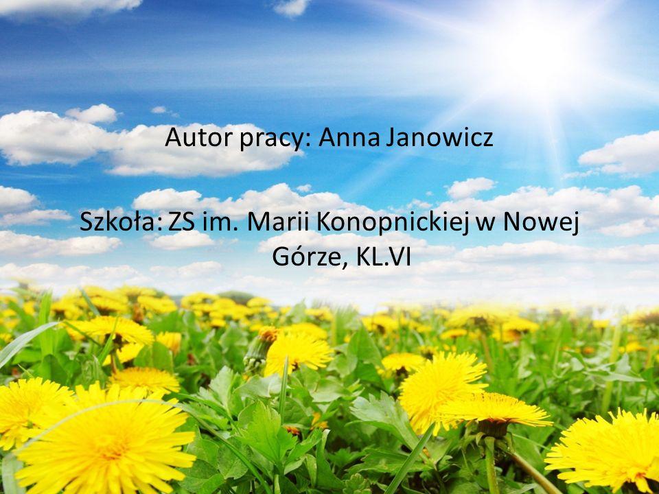 Autor pracy: Anna Janowicz Szkoła: ZS im