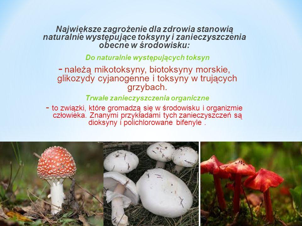 Do naturalnie występujących toksyn Trwałe zanieczyszczenia organiczne