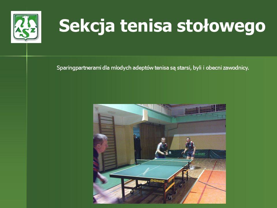 Sekcja tenisa stołowego