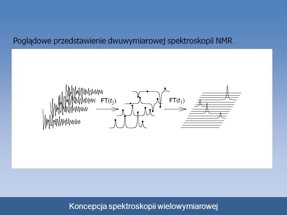 Koncepcja spektroskopii wielowymiarowej