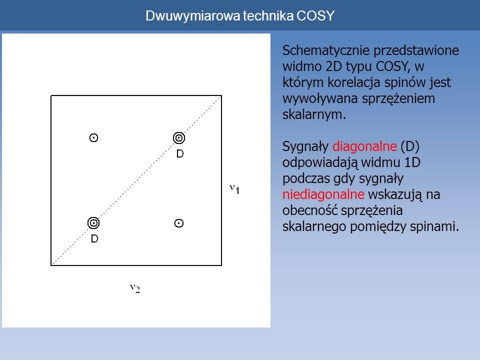 Dwuwymiarowa technika COSY