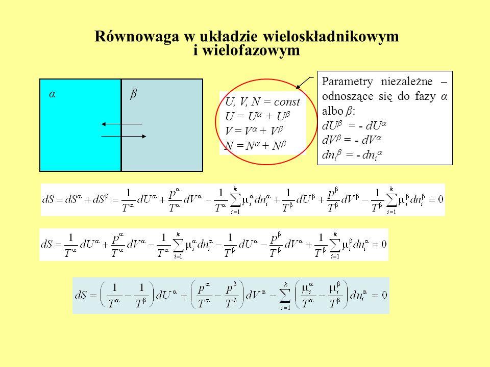 Równowaga w układzie wieloskładnikowym i wielofazowym