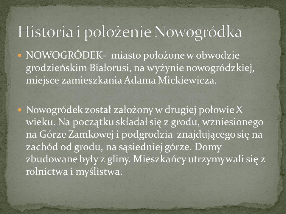 Historia i położenie Nowogródka