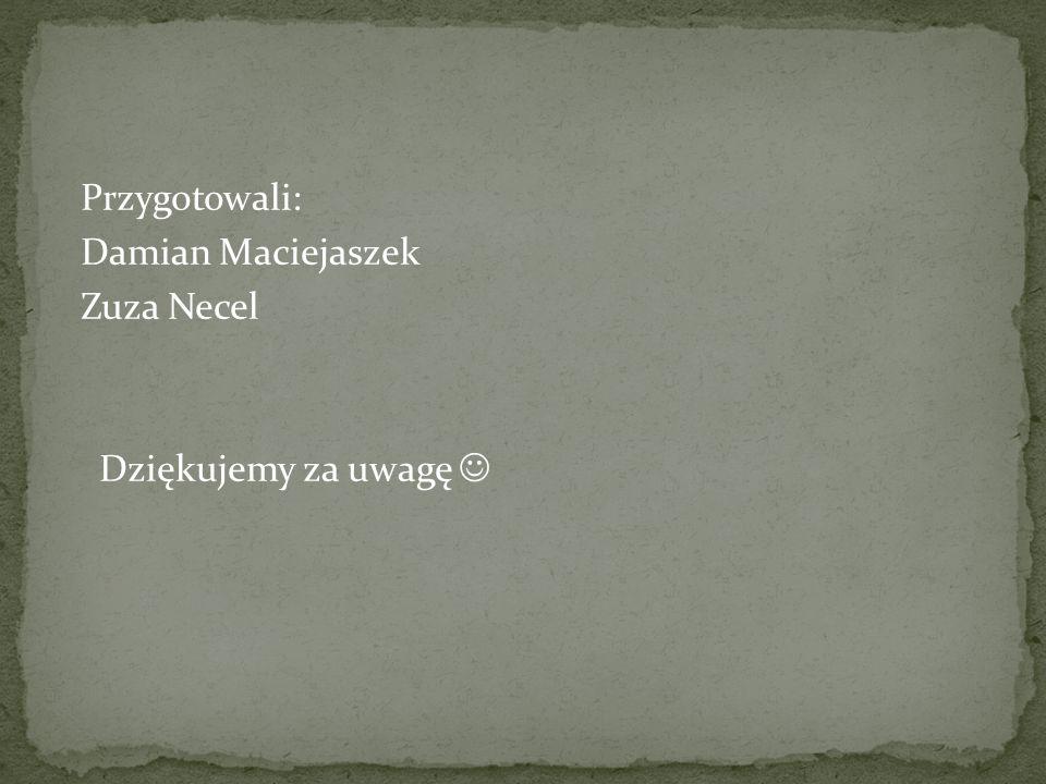 Przygotowali: Damian Maciejaszek Zuza Necel Dziękujemy za uwagę 
