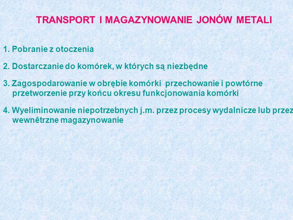 TRANSPORT I MAGAZYNOWANIE JONÓW METALI